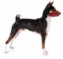 Kaganiec dla psa weterynaryjny czerwony r.5(XL)